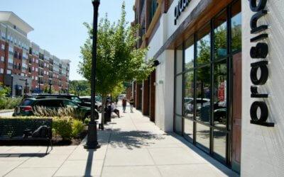 Great Day St. Louis – Best New Restaurants in St. Louis